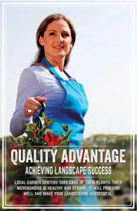 quality-advantage
