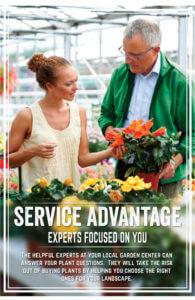 service-advantage