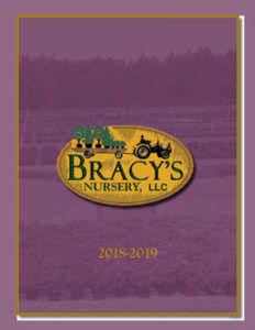 Catalog - Bracy's Nursery